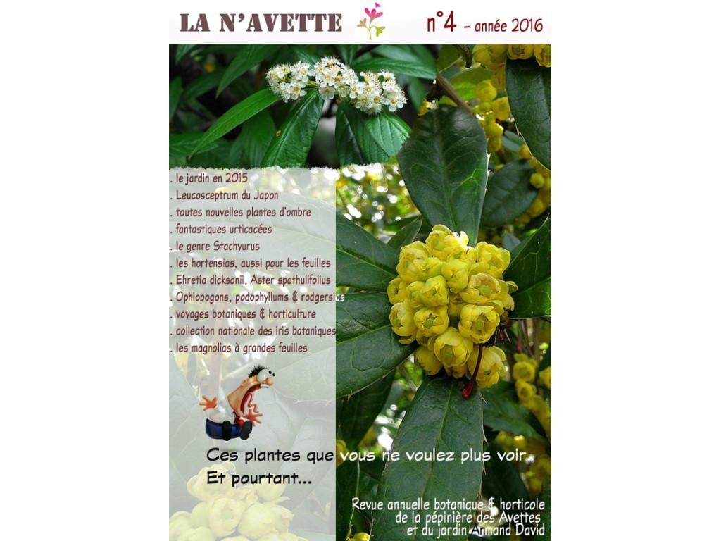 BULLETIN LA N'AVETTE n°4