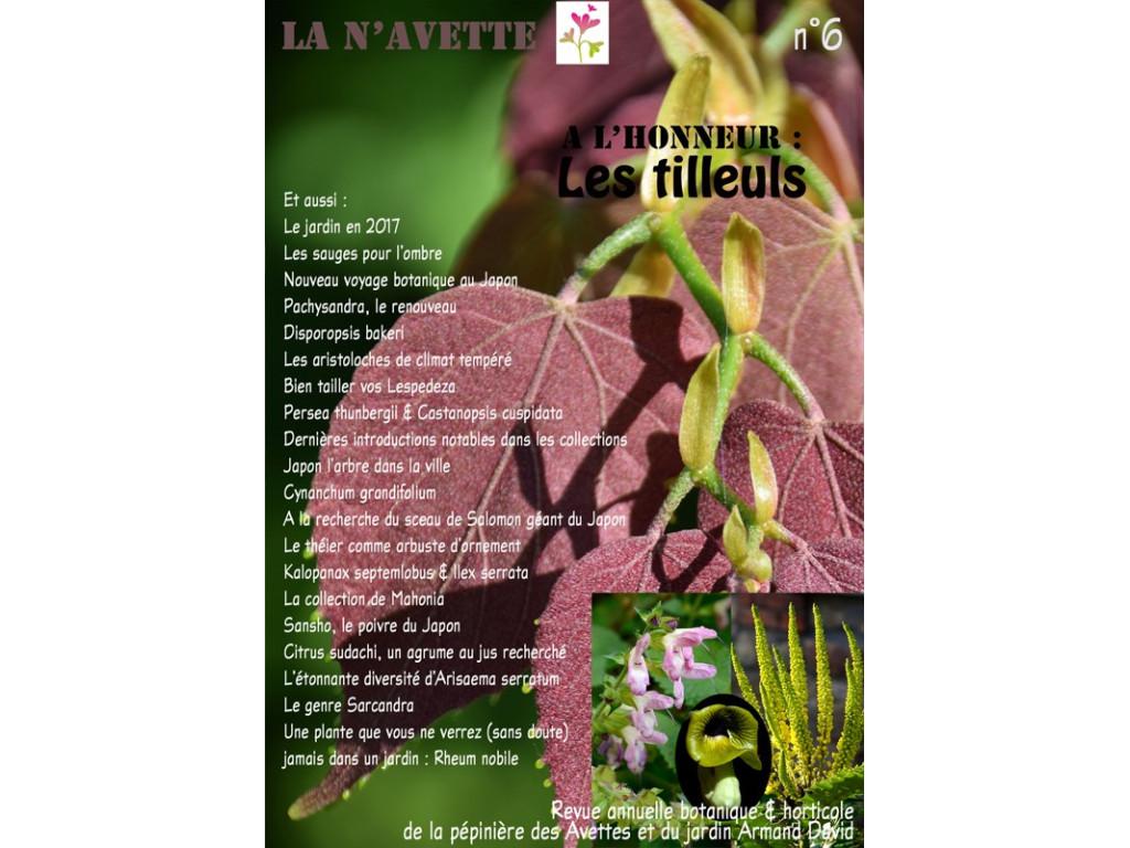 BULLETIN LA N'AVETTE n°6